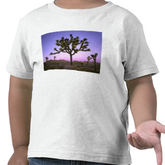 JOSHUA TREE NATIONAL PARK, CALIFORNIA. USA. T-SHIRT