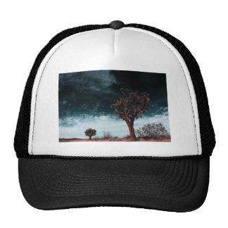Joshua Tree Special Cap