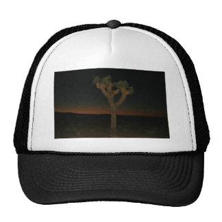 Joshua Tree Sunset Trucker Hat