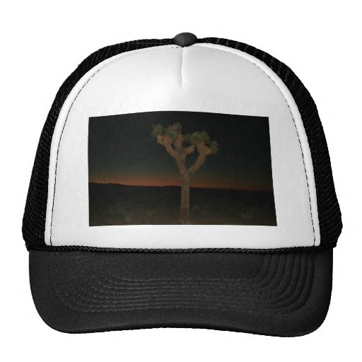 Joshua Tree Sunset Hat