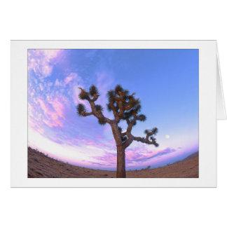 """""""Joshua Tree Swirl"""" Card"""