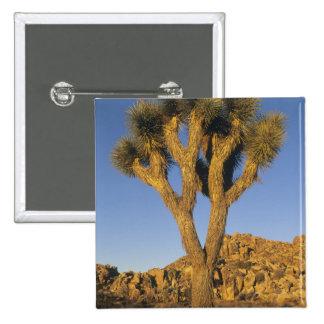 Joshua Tree, Yucca brevifolia), and granite 15 Cm Square Badge