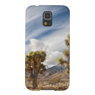 Joshua Trees in Desert Cases For Galaxy S5