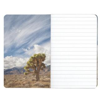 Joshua Trees in Desert Journal