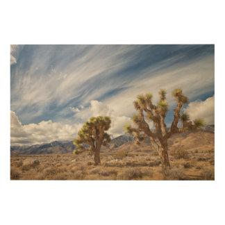 Joshua Trees in Desert Wood Wall Art