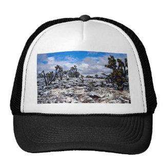 Joshua trees, Meadview, Arizona, U.S.A. Trucker Hat