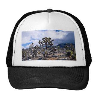 Joshua trees Meadview Arizona U S A Trucker Hat