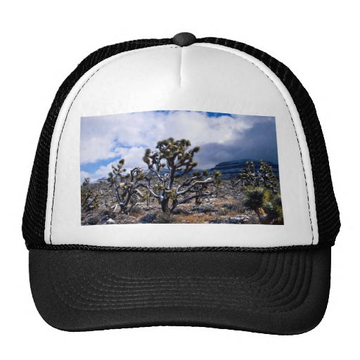 Joshua trees, Meadview, Arizona, U.S.A. Trucker Hat