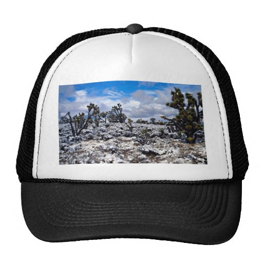 Joshua trees, Meadview, Arizona, U.S.A. Mesh Hat