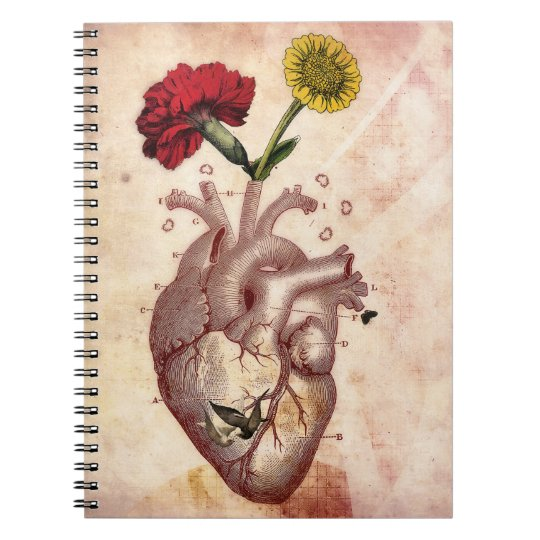 Journal, Notebook, Spiral, Anatomie 2, Heart Notebook