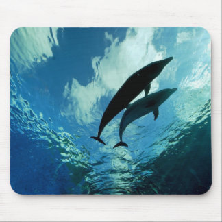 Journey through life together mouse pad