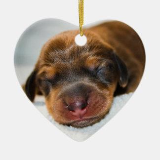 Jovi-Lovebugdoxies-puppy keepsake Ceramic Heart Decoration