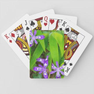 Joyce Kilmer-Slickrock Wilderness 2 Playing Cards