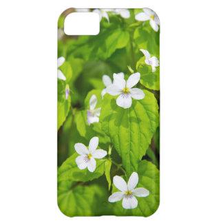 Joyce Kilmer-Slickrock Wilderness iPhone 5C Case