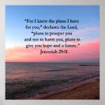 JOYFUL JEREMIAH 29:11 SUNRISE POSTER