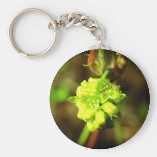 Joyfyl Springtime Basic Round Button Key Ring