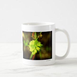 Joyfyl Springtime Mug