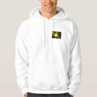 Joyfyl Springtime Sweatshirt