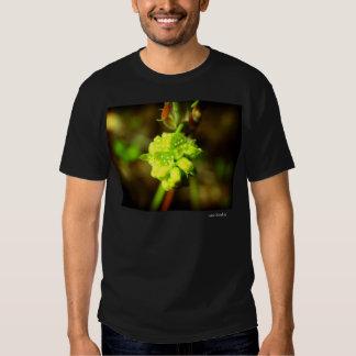 Joyfyl Springtime Tshirts