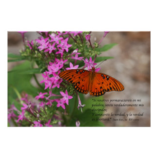 Juan 8:31, 32 con Mariposa Gulf Fritillary Posters