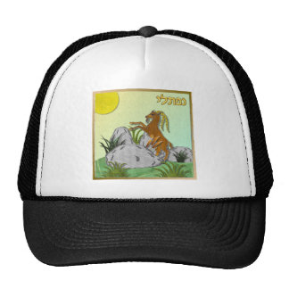 Judaica 12 Tribes Israel Naphtali Trucker Hats