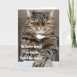 Judgmental Cat Ate Easter Bunny Humour Funny Holiday Card