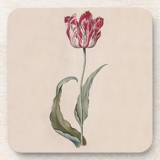 Judith Leyster Tulip Coasters