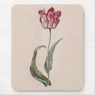 Judith Leyster Tulip Mouse Pad