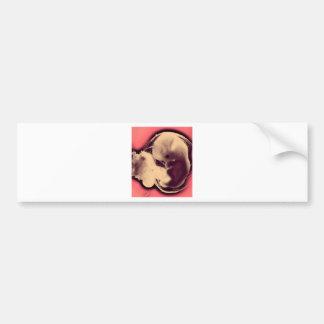 Juice the Fetus Bumper Sticker