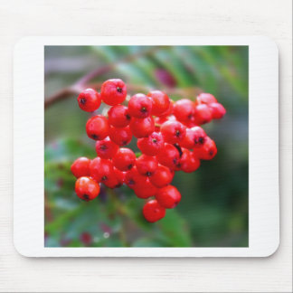 Juicy Red Berries Mouse Pad