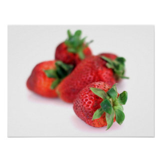 Juicy Red Strawberries Food Photography Poster