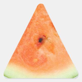 Juicy Watermelon 4Aleah Triangle Sticker
