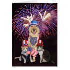July 4th Birthday Card with Funny Pets