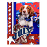July 4th - Brittany Spaniel - Charlie