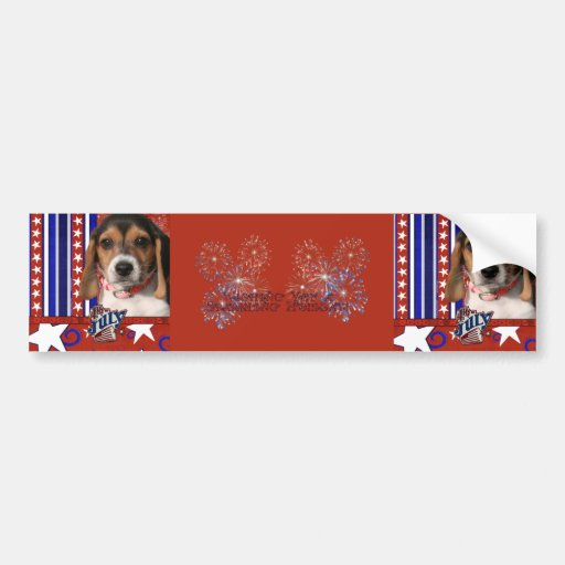 July 4th Firecracker - Beagle Puppy Bumper Stickers