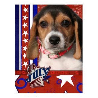 July 4th Firecracker - Beagle Puppy Postcard