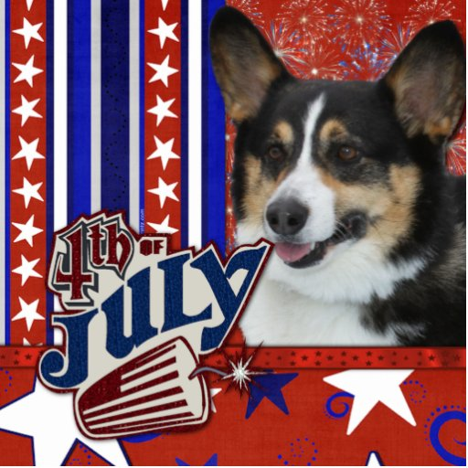 July 4th Firecracker - Corgi Photo Cutouts