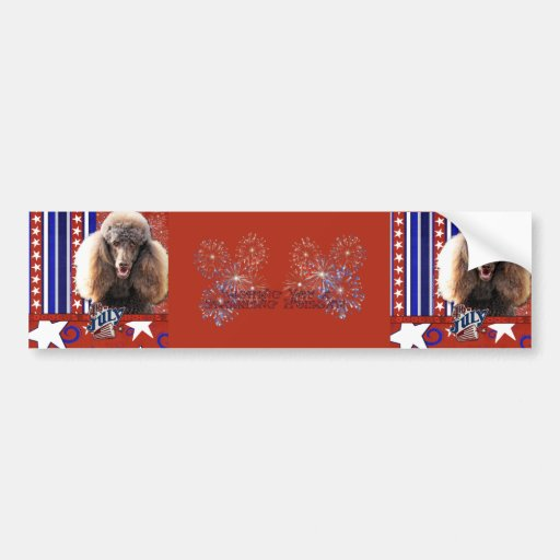 July 4th Firecracker - Poodle - Chocolate Bumper Stickers