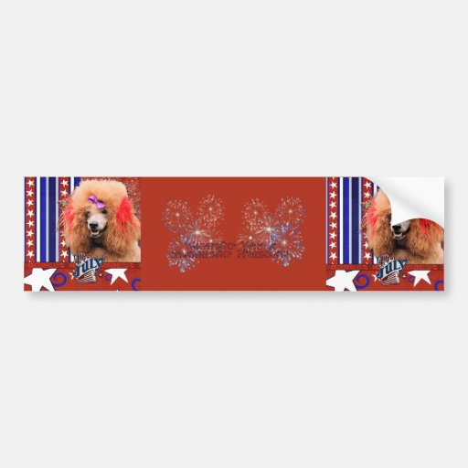 July 4th Firecracker - Poodle - Red Bumper Stickers