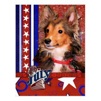 July 4th Firecracker - Sheltie Puppy - Cooper Postcard