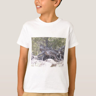 Jumble of Aging Wood T-Shirt