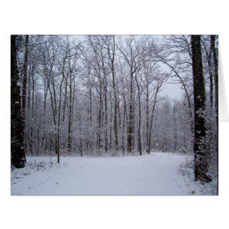Jumbo Greeting Card, Blank - Snowy Woods Big Greeting Card