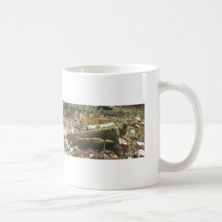 Jump-start your Day Coffee Mug