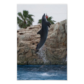 Jumpin Poster
