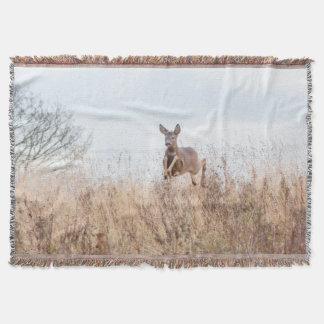 jumping deer photograph blanket