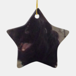 Jumping doges christmas ornament