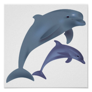 Jumping dolphins illustration poster