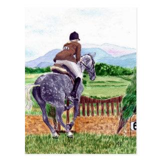 Jumping Horse Postcard