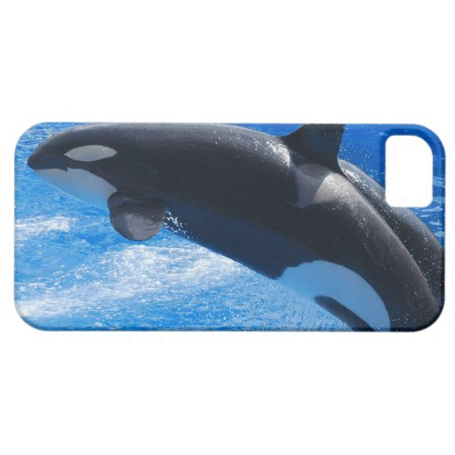 Jumping Orca Whale iPhone 5 Covers