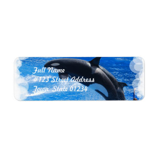 Jumping Orca Whale Return Address Label